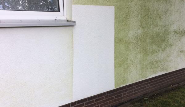 Fassilo Fassadenreinigung Musterfläche
