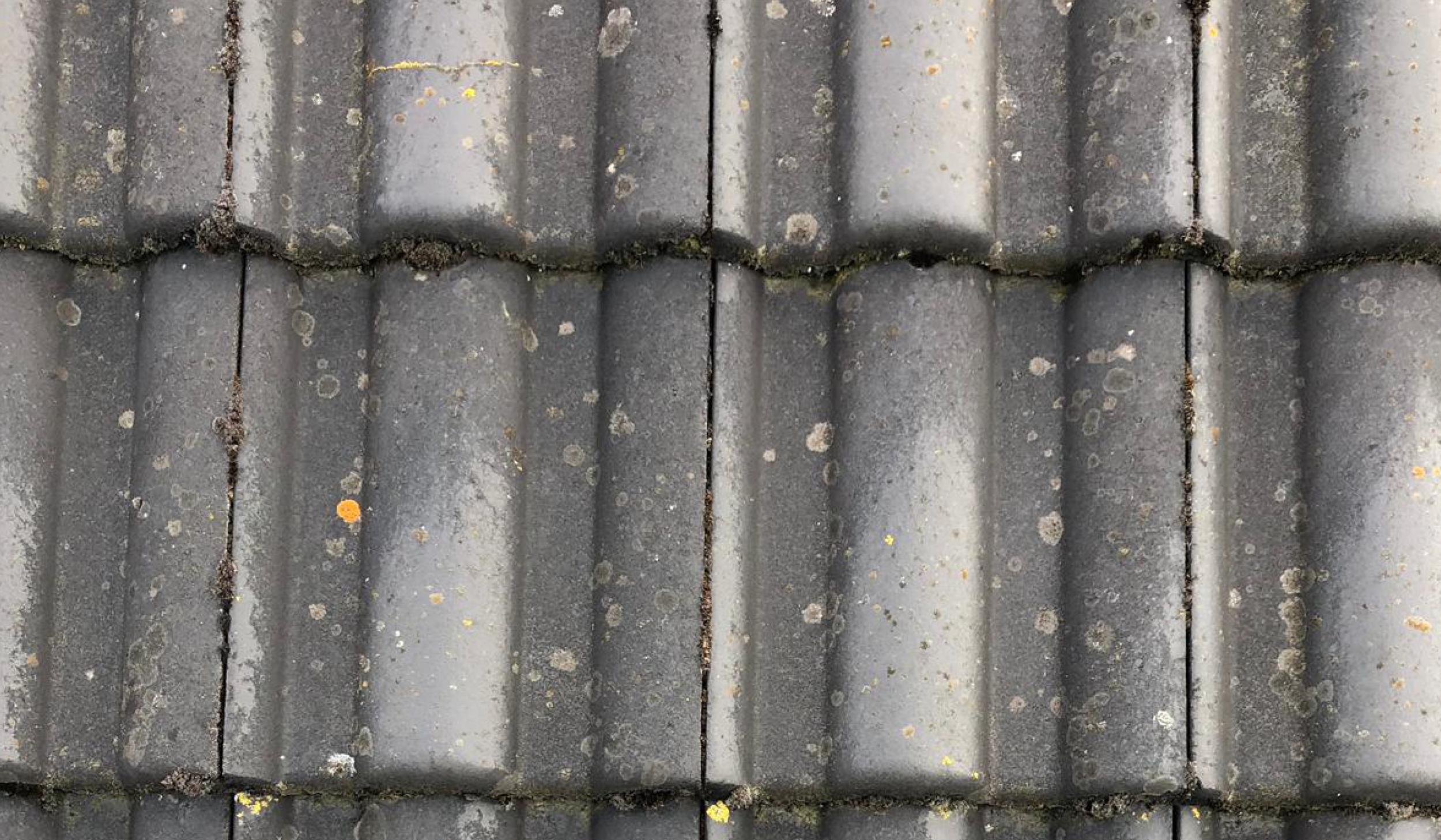 Fassilo Fassadenreinigung Dachziegel dreckig