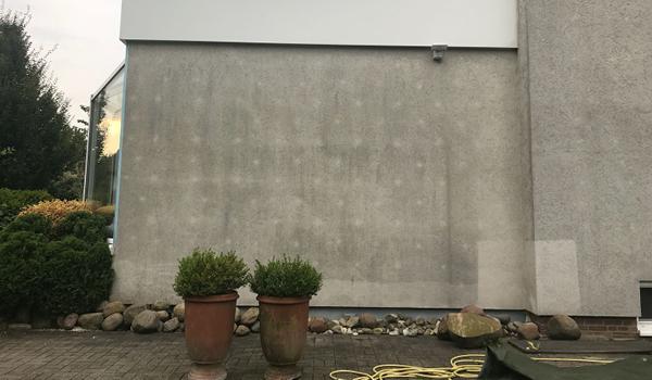 Fassilo Fassadenreinigung vorher 04