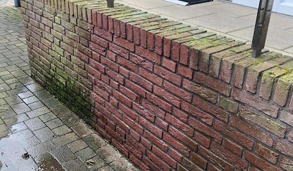 Professionelle Fassadenreinigung Fassilo Klinker reinigen